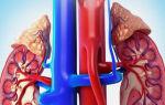 Причины возникновения пиелонефрита