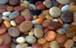 Какие бывают камни в почках