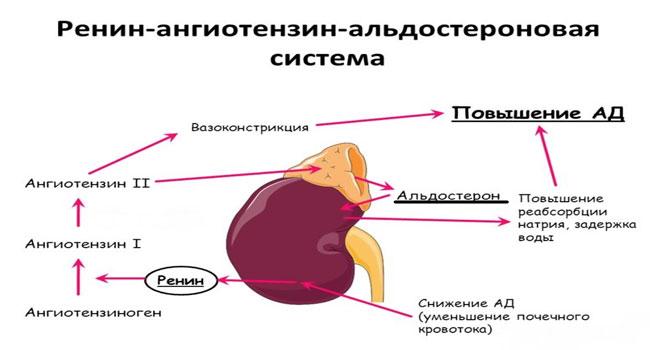 биохимические изменения